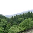 水坂峠 新道